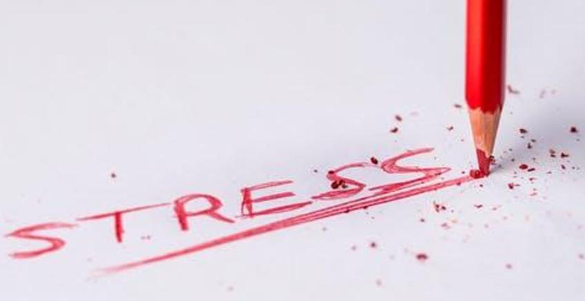 Kortizol ve Stres