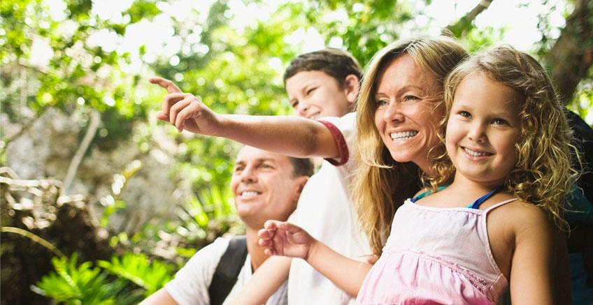Dikkat ve Ebeveynle Etkileşim Girdilerinin Dil Gelişimine Etkisi