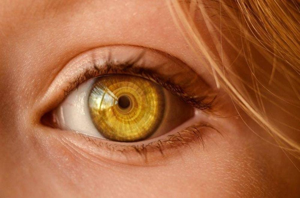 Diyetisyenlere Göre Göz Sağlığını Destekleyen 6 Gıda