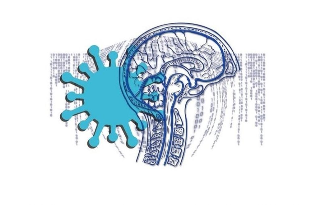 COVID-19 Travmatik Beyin Hasarı Gibi Beyni Uzun Vadede Etkileyebilir!